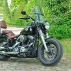Meine Harley in der Tourenversion....
