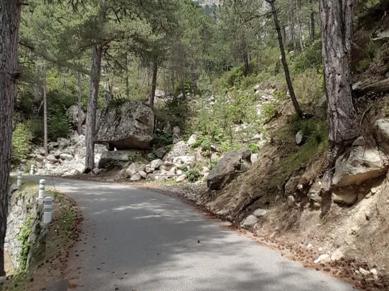 Korsika - Restonicaschlucht