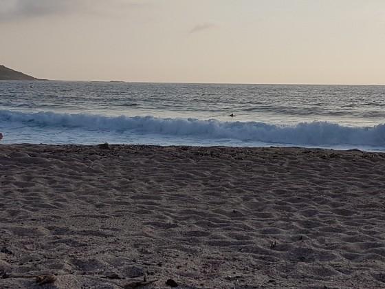 Korsika - Golfe de Liscia ( 1.5m ü. NN)